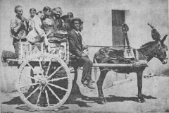 Working Cart from 1890