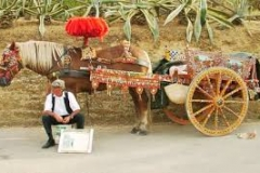 Working Cart from Agrigento